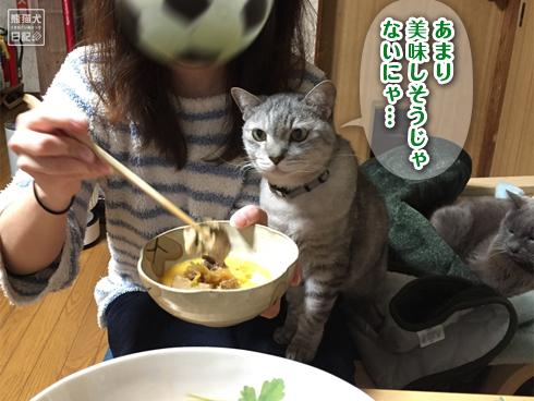 20200301_すき焼きと猫3