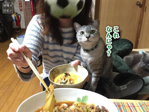20200301_すき焼きと猫2
