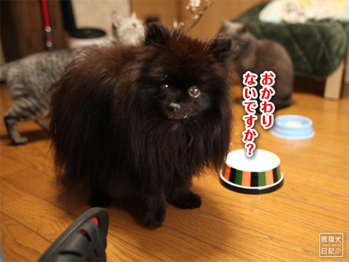 20200310_ケーキ完食3