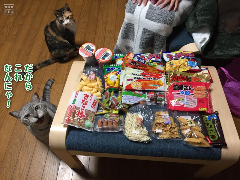 駄菓子と猫