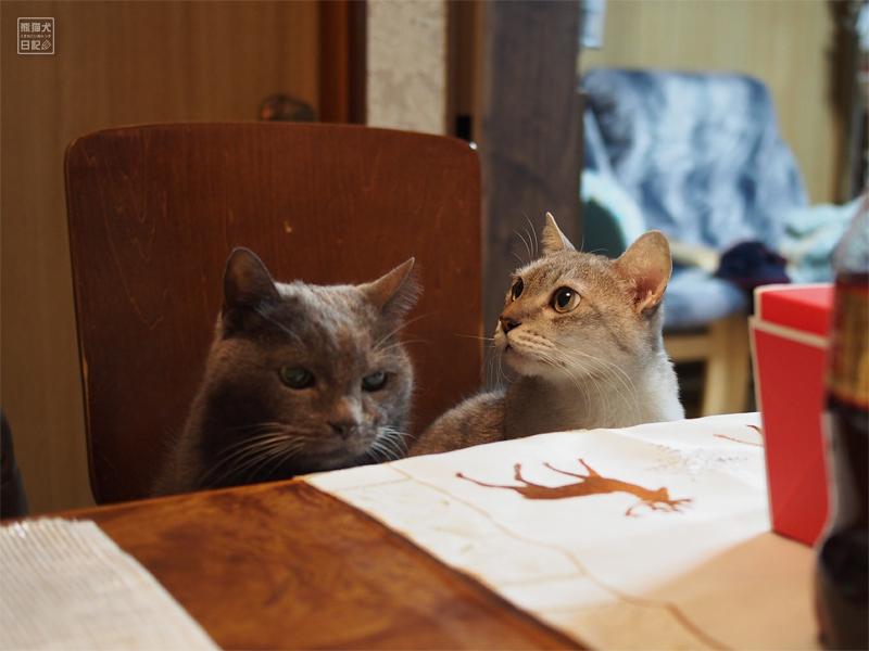 石像猫にいな&寿喜
