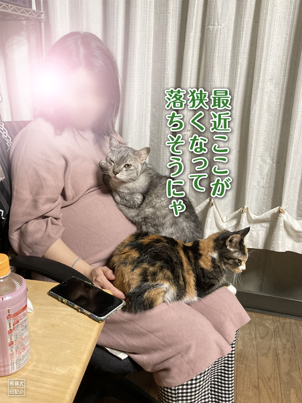 寿喜&三毛猫の稚葉