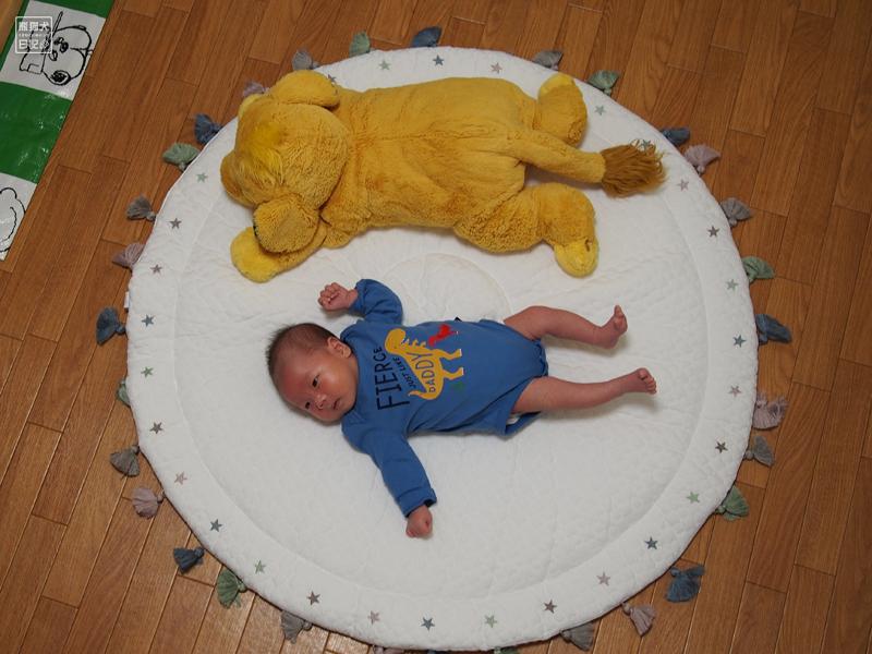 シンバと赤ん坊